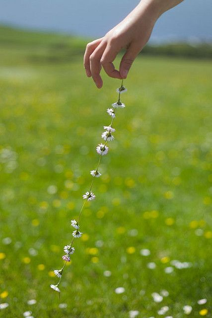 lazy summers, making necklaces out of clover flowers...