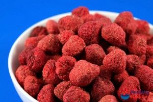 This is something I must try!! Freeze drying your food at home!