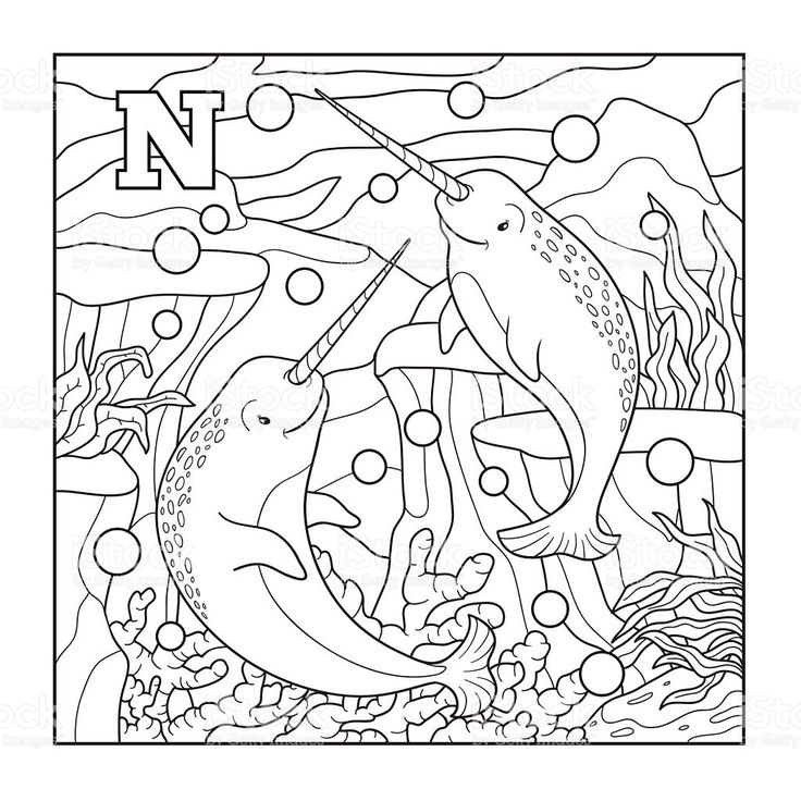 Coloring book , colorless illustration Coloring books