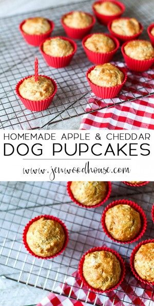 Treat your favorite fur baby to these easy, healthy, homemade apple and cheddar dog cupcakes!