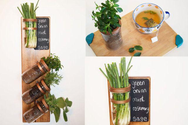 Je eigen kruidentuin binnen in huis! | ThePerfectYou.nl