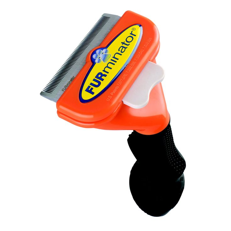 """FURminator+deShedding+Tool+for+Medium+Dogs+-+Blade:+2.65"""";+Width,+Quickly+and+easily+removes+(it+doesn't+cut,+it+removes)+the+loose,+dead,+undercoat+hair+that's+the+underlying+source+of+a+pet+owner's+major+complaint.+Designed+specifically+for+medium+size+dogs+with+long+coats. - https://www.petco.com/shop/en/petcostore/product/furminator-deshedding-tool-for-medium-dogs"""