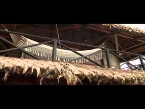 Amazonas, el destino en el programa 'VIVE COLOMBIA' - YouTube