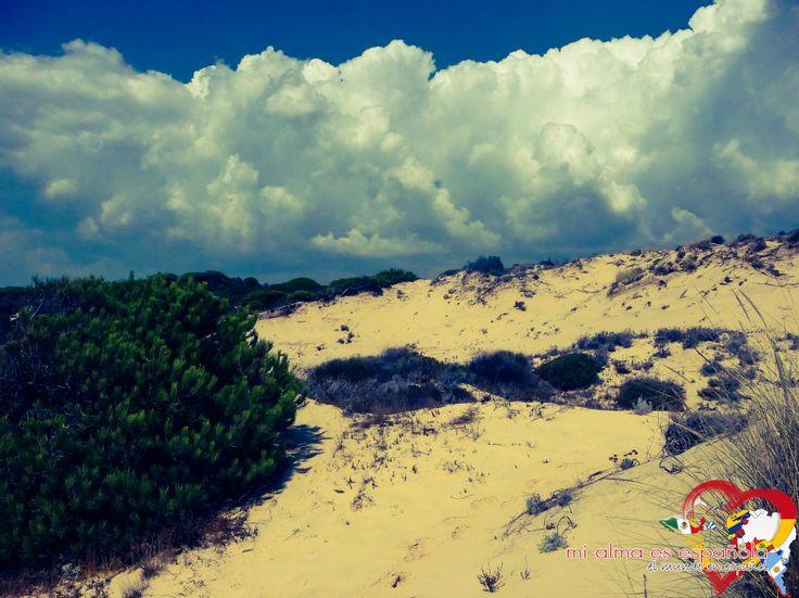 Playa de Rompeculos. Andalucía, España. #travel #Spain #sun