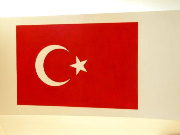 Türk Bayrağı Çalışması