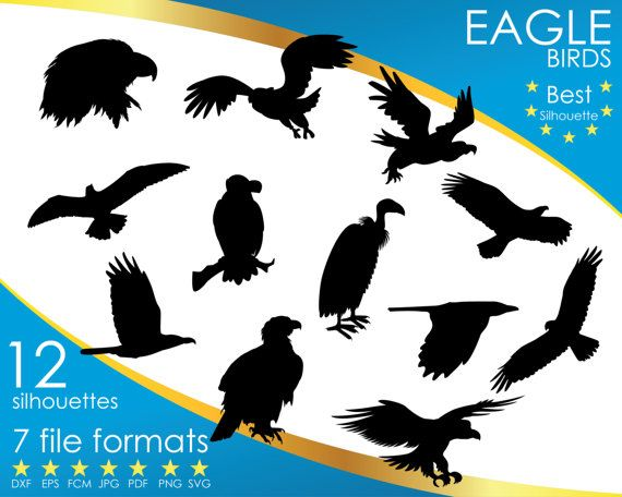 Hey, I found this really awesome Etsy listing at https://www.etsy.com/listing/514610647/12-silhouettes-eagle-vulture-bird-dxf