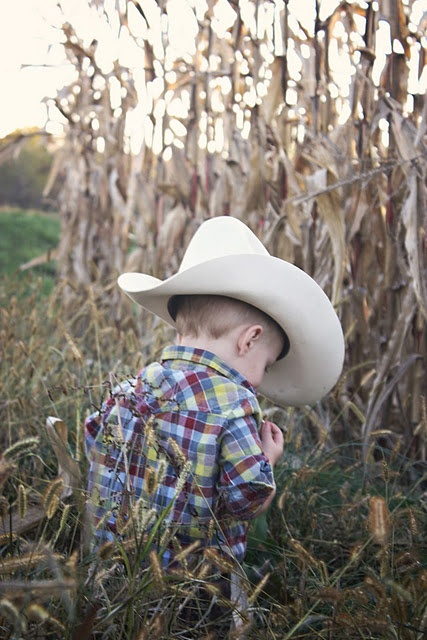 toddler cowboy @stay becker-esbach toddler with cowboy hat by cornfield