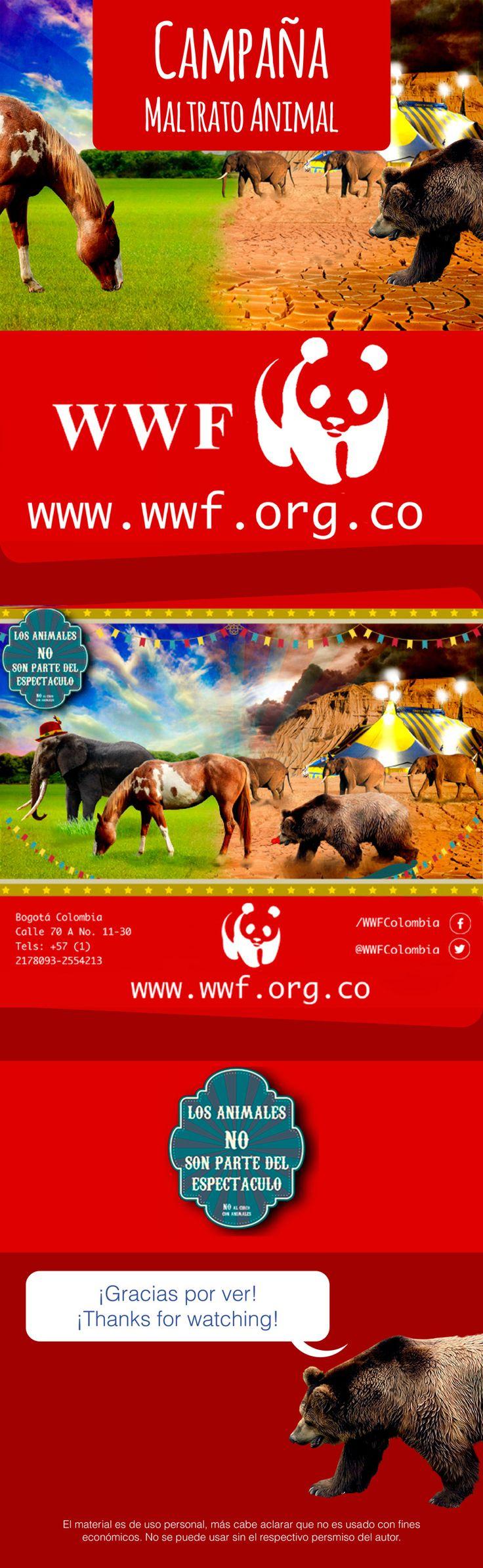 No animales en circos, no al maltrato animal.