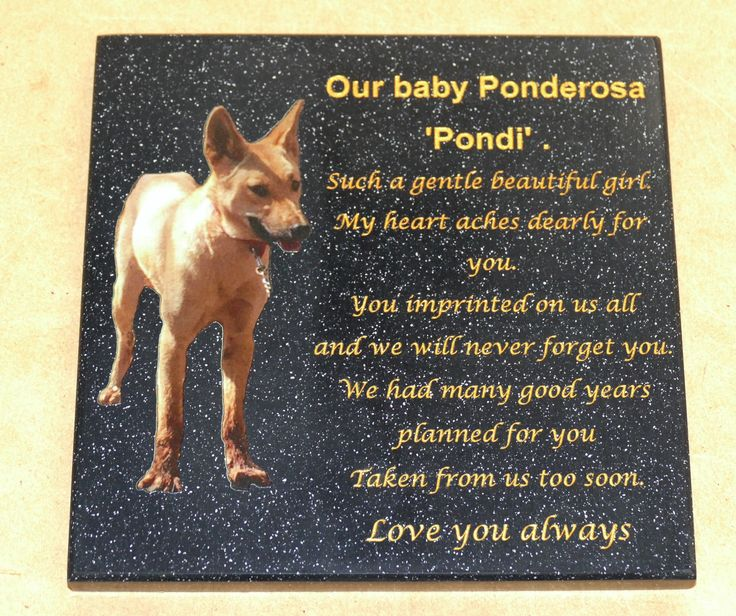 Memorial plaque custom engraved with gold fill, Colour printed option Made for exterior use