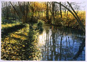 Английский художник Джо Фрэнсис Дауден (Joe Francis Dowden) рисует гиперреалистичные акварели. И считает, что это под силу каждому, нужно лишь знать секреты техники   Есть его книжка