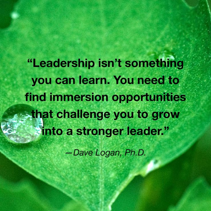 1000+ Images About Leadership Quotes On Pinterest