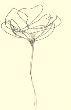 abstract flower line drawing - Google Search