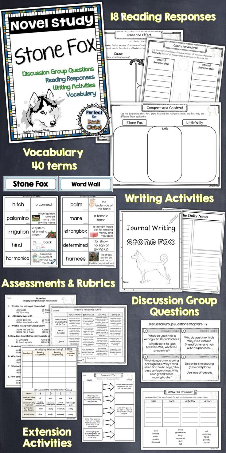 This Stone Fox novel study unit has it all, from reading responses, to discussion group questions, vocabulary cards, writing activities, a comprehensive end of the book assessment, plus SO much more!