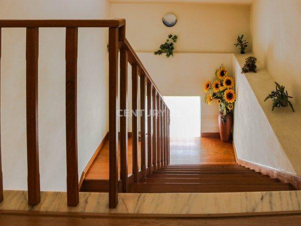 #girassol em #leiria #stairs