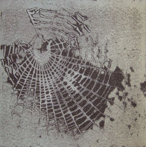 Cobweb 1 Emily Harvey 20.5cm x 20.5cm (This plate was made from a real cobweb)