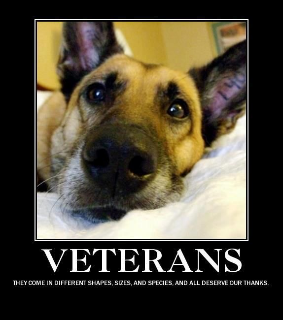 Thank those who serve- on two or four legs!