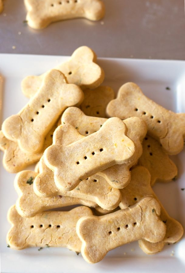 Your dog will go nuts for these gluten-free peanut butter pumpkin dog treats!
