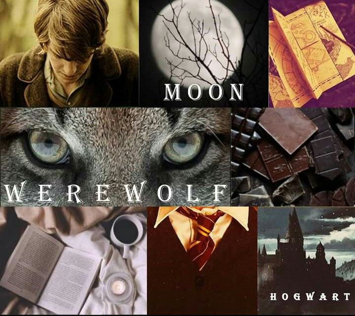 Pin By Lousianna On Harry Potter The First Fandom I Fell For Harry Potter Ron Weasley Harry Potter Quizzes Harry Potter World