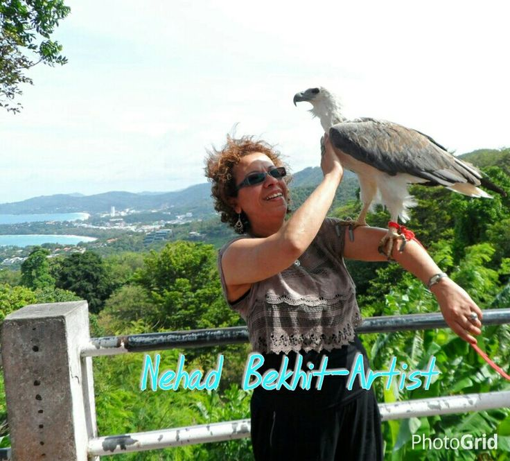 Bird  Nehad Bekhit-Artist