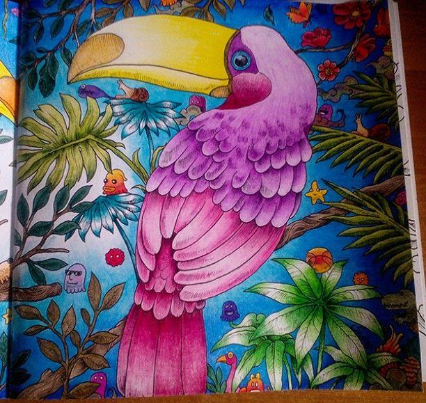 Colored Pencil Tutorial Adult Coloring Books Doodle Art Animal Kingdom Color Schemes Johanna Basford