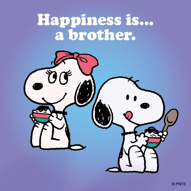 19 Best Images About Brother