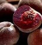 Peche de Vigne / Black Boy Peaches - Poached in Muscat Wine