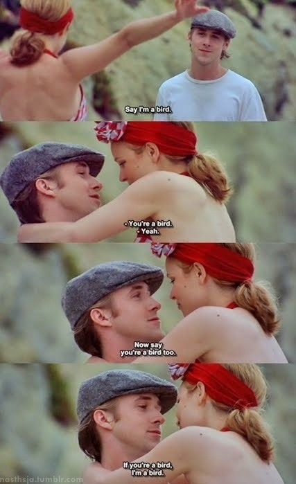 the notebook likes - cute - ideas for costuming - ideas for parodies of scenes dislikes - corny - no kissing allowed in our films, so this scene made into a parody could be irrelevant