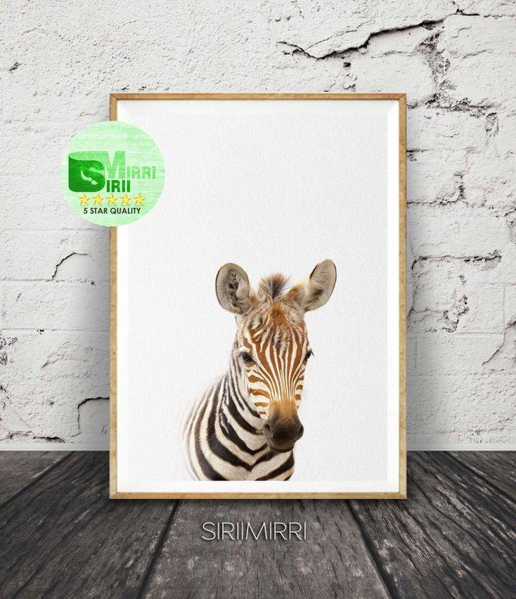 Best 25+ Zebra room decor ideas on Pinterest | Zebra decor ...