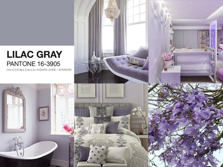 Best Pantone Lilac Gray Images On Pinterest Color Trends