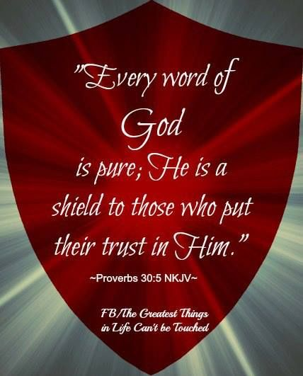 {This profile is protected by the Shield of God} ~ Proverbs 30:5 Every word of God is pure; He is a shield to those who put their trust in Him.