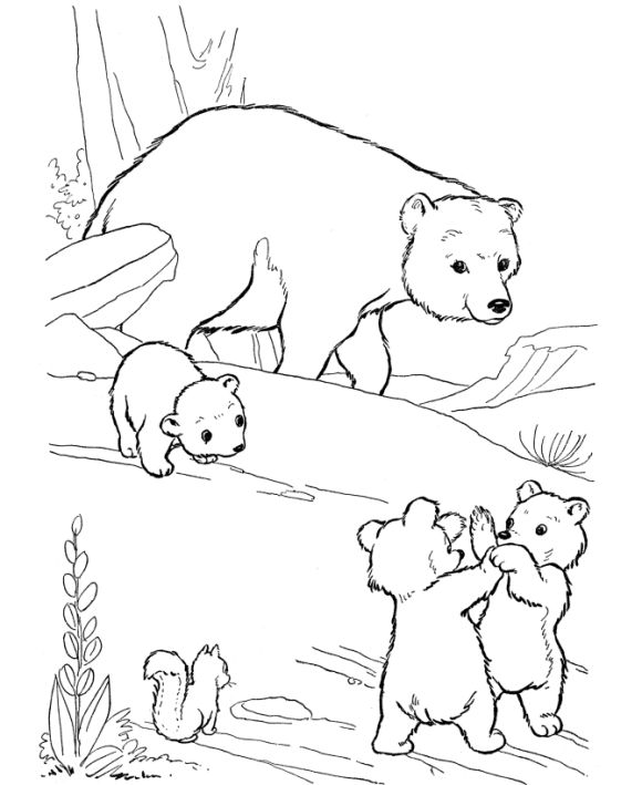 bear hunt coloring pages - photo#14