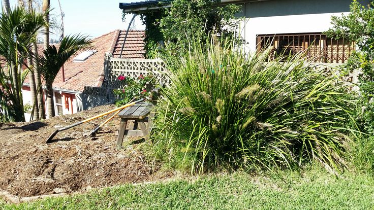 Seaforth garden before