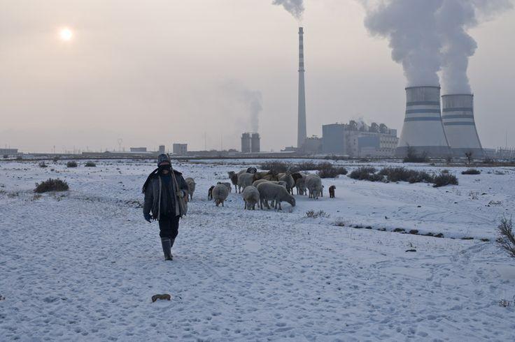 Carlos Spottorno. QITAI. Thermal power station and shepherd.
