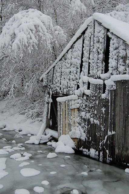 Barn Attacked By Winter Storm