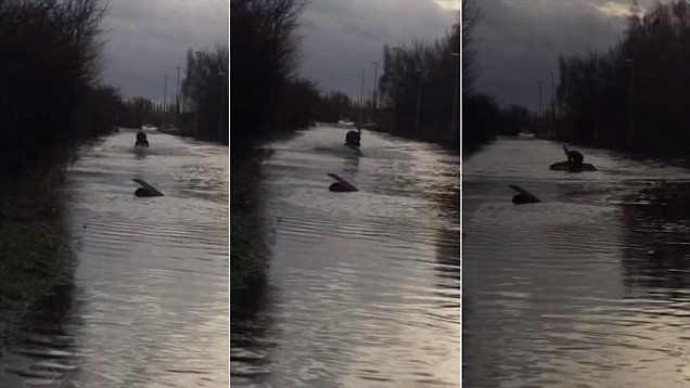 Daredevil Ben Varey dons his Santa hat as he rides down a flooded road in Castleford on his JET SKI.