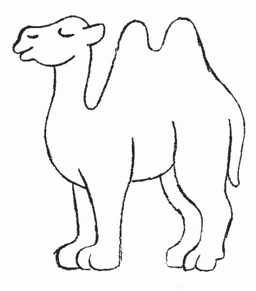 18 best Camel Coloring Pages images on Pinterest | Children coloring ...