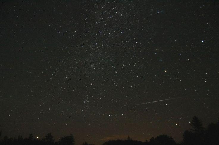 shooting stars at Gordon's Park