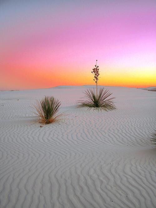 Sunrise in White Sands National Monument (Photo: kds4850/Flickr)