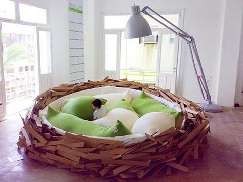 Giant Bird Nest !