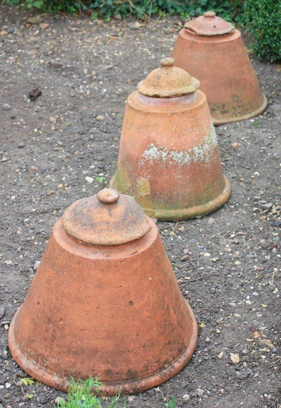 Early American Gardens: Garden Inspiration - Metal & Clay Cloches