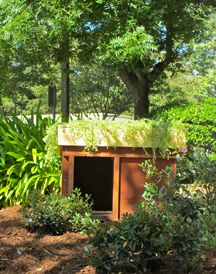 Practical applications for green roofs and green walls - A living structure and sustainable home for your dog!: Green Wall, Green Roof