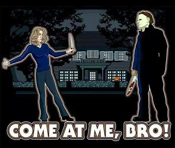 Halloween Film, Halloween Queen, Halloween Michael Myers, Slasher Movies,  Movie Memes, Funny Memes, Scary Movies, Horror Films, Bro