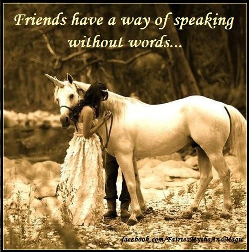 fantasy quote unicorn friends www.facebook.com/fairiesmythsandmagic