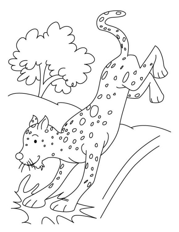 Want To Provide A Fun Activity For Your Child Have Closer Look On Wild Animals Especially Cheetah Check Out 10 Free Printable Coloring Pages
