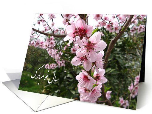 14 best persian new year images on pinterest persian persian cats happy norooz blooming tree card m4hsunfo