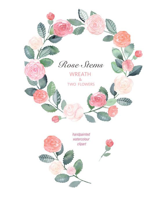Hand Painted Watercolour Clip Art   Rose Stems Wreath and