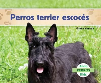 Perros terrier escoces/ Scottish Terriers