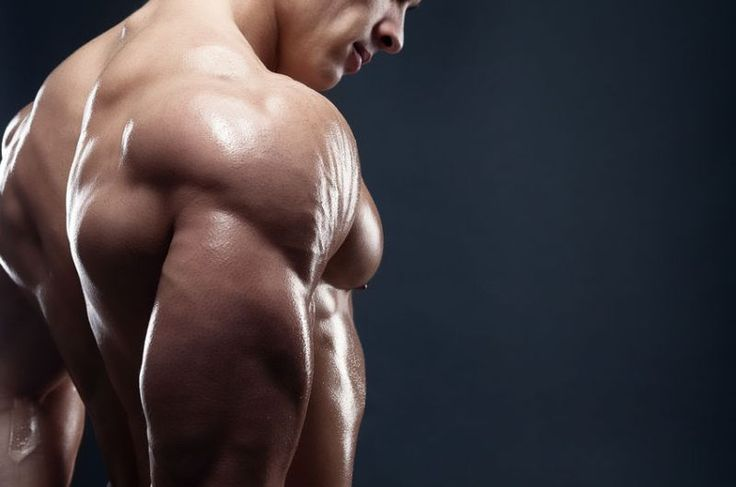 Give me 30 days and I'll give you bigger and stronger triceps, guaranteed. Everything you need is right here in this article: theory, exercises, and workouts.