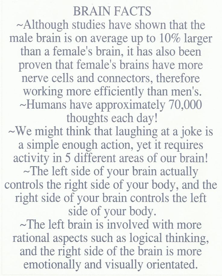 brain facts The idea that you don't use all of your brain is a widespread myth brain scan studies show all areas are active so products that claim to tap into the rest of your brain don't really do .