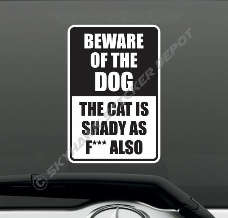 Best Funny Car Truck Bumper Sticker Vinyl Decal Jokes Humor - Funny decal stickers for cars